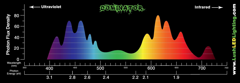 Dominator 2xxl Data